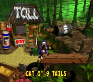 Cat-O-9-Tails Credits Screen - Donkey Kong Country 2