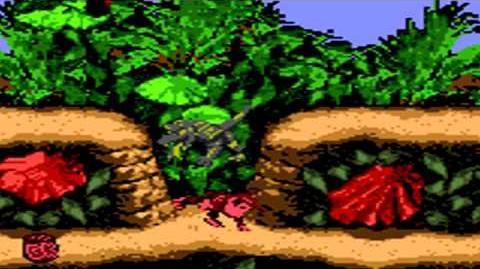 Donkey Kong Country (GBC) - Kongo Jungle - Jungle Hijinxs-0