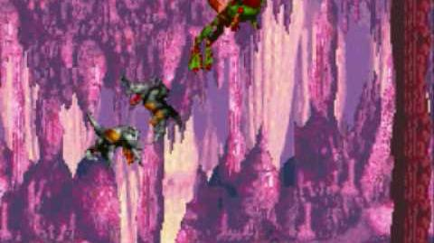 Donkey Kong Country Level 2-3 Bouncy Bonanza