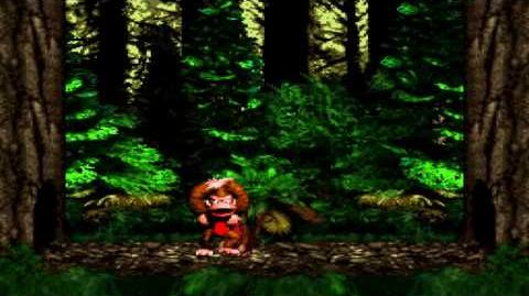 Donkey Kong Country (SNES) - Vine Valley - Vulture Culture