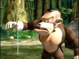 Bluster Kong