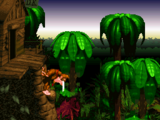 Jungle Hijinxs (Donkey Kong Country)