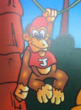 Diddy-kong-donkey-kong-junior
