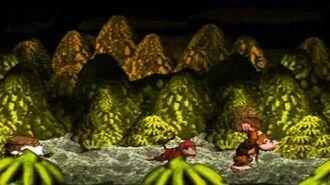 Donkey Kong Country Boss 3 Queen B. (no damage) HD