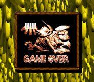 Donkey Kong Land II