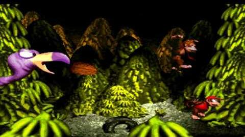 Donkey Kong Country (SNES) - Chimp Caverns - Necky's Revenge