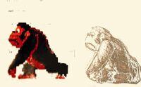 Donkey Kong Original Concept