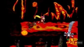 Donkey Kong Country 2 - Kleever