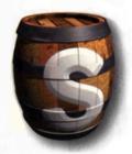 Switch Barrel