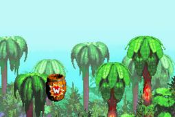DKC GBA Jungle Hijinxs Warp