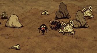 Mound desert