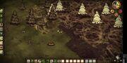 Spider Dens cluster