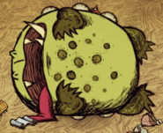 Toadstool Dead