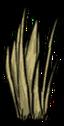 Grass Tuft