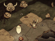 Beefalo life stages