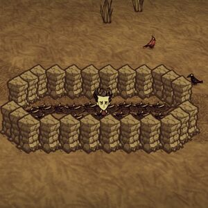 Dont starve trap