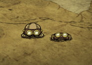 Goggles on ground