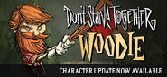 Woodie update