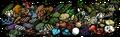 Thumbnail for version as of 09:56, May 22, 2014