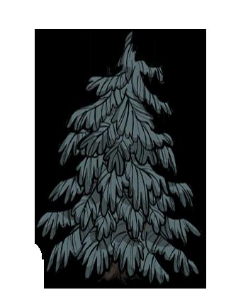 樹/疙瘩樹