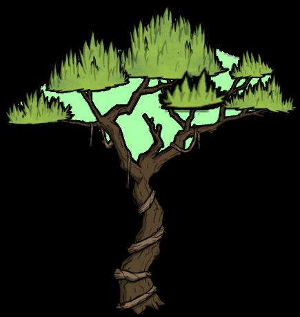 樹/叢林樹