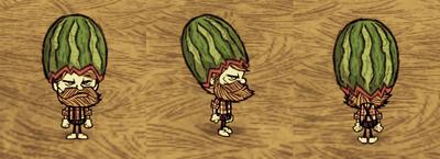 Fashion Melon Woodie