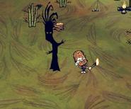 Burned Regular Jungle Tree