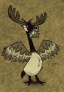 Moose finds a target