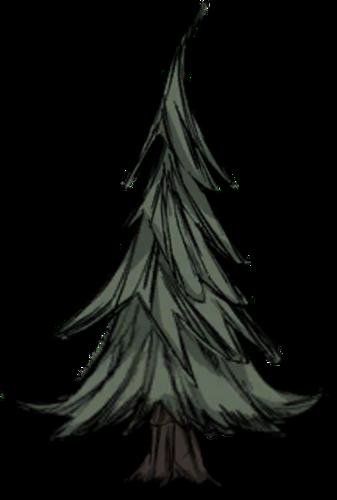 Tree/Evergreen