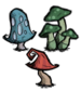 Mushroom Group