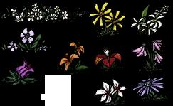 Flores todas
