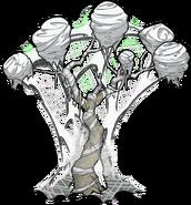 Unused Cocooned Tree