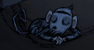 Splumonkey Asleep