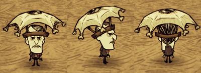 Eyebrella Maxwell