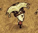 Eyebrella