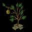 """Character"" Tree"