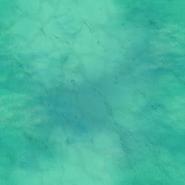 Shallow Ocean Terrain Texture