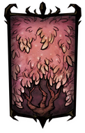 Sugarwood Tree Portrait Background