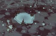 Freezed Pond