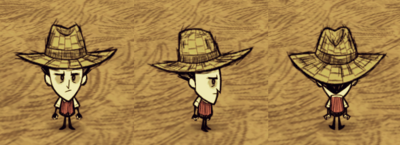 Straw Hat Wilson