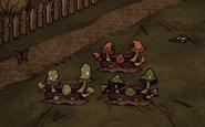 Mushroom Planters Stage 3
