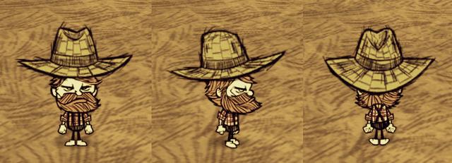 File:Straw Hat Woodie.png