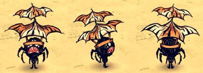 Dumbrella Webber