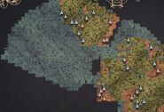 Fungal Forest Map