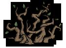 Arbusto de vid