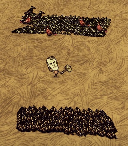 dont starve how to get seeds