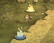 Woodie Endothermic Fire Don't Starve
