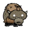 Baby Beefalo