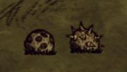 Bee Mines