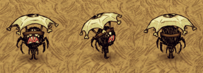 Eyebrella Webber